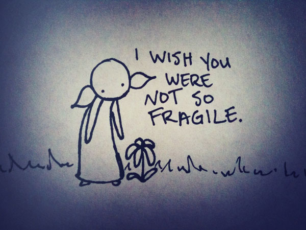 i wish you were not so fragile.